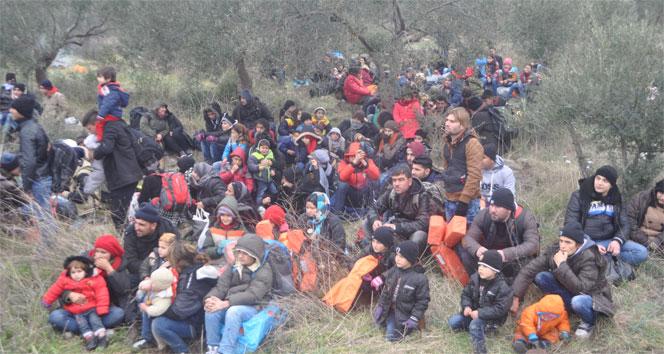Çanakkale'de 572 mülteci yakalandı