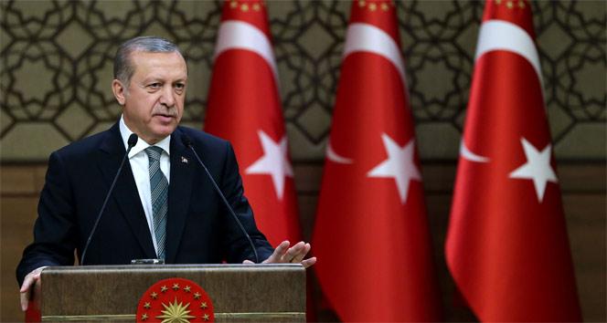 Erdoğan, 7 kanunu onayladı