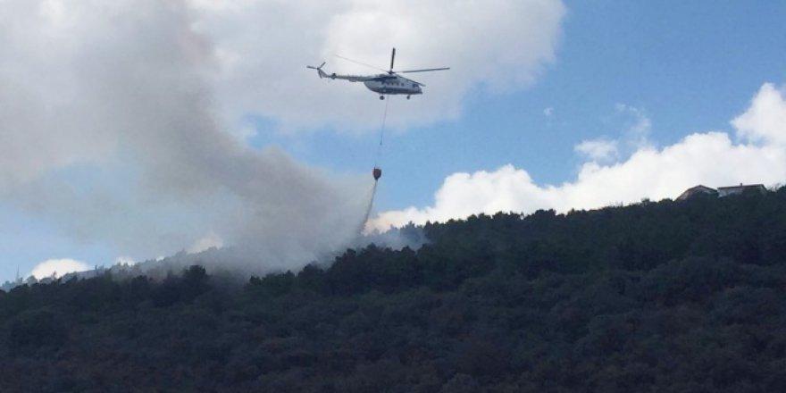 Maltepe'de ormanlık alanda 3 ayrı noktada yangın!