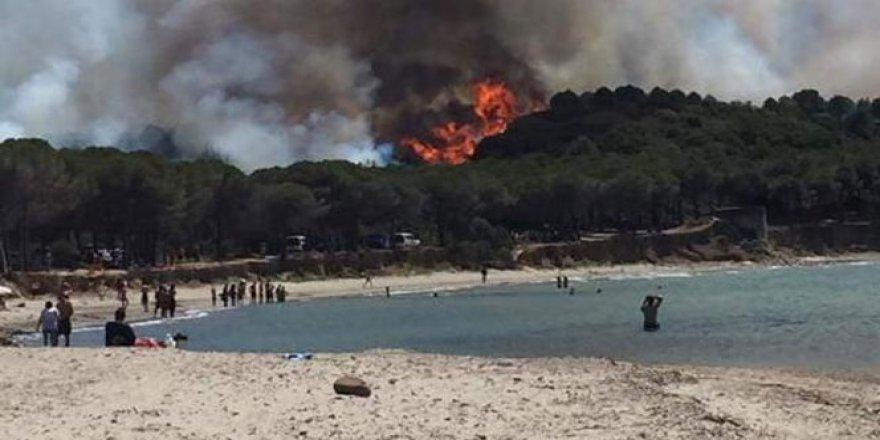 Çanakkale'de korkutan orman yangını!