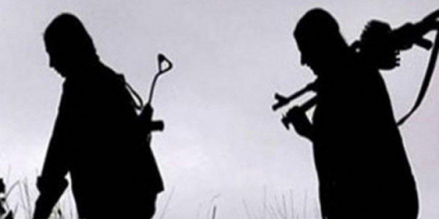 Ağrı'da sözde Sinek Yayla sorumlusu terörist öldürüldü