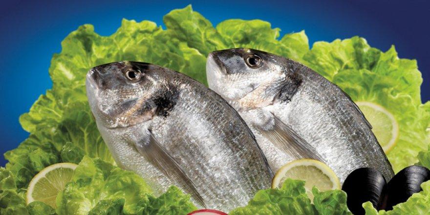 Balık vücut direncini de arttırıyor!