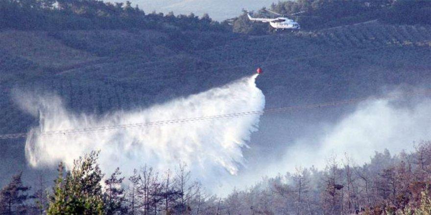Bursa, Mudanya'da Orman Yangını