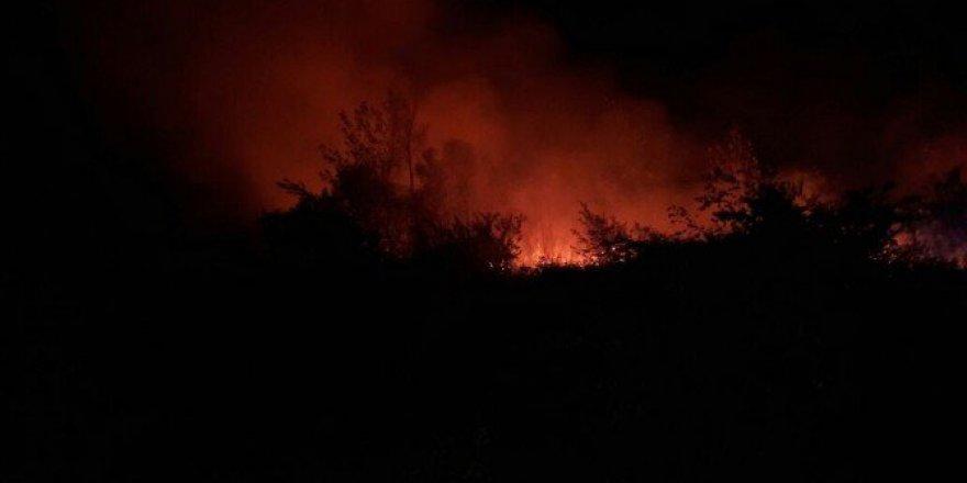 İznik'te Orman Yangını! İlk görüntüler