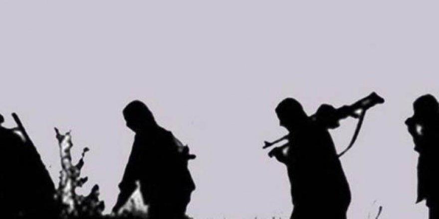 Şırnak'ta 5 PKK'lı Sınır Kapısında Teslim Oldu