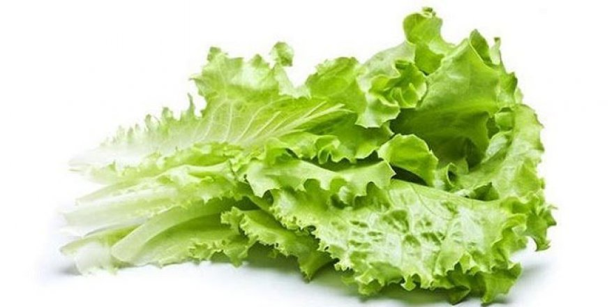 İstanbul'da zam şampiyonu kıvırcık salata oldu