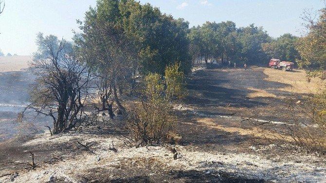 Çan Bilaller Köyünde Orman yangını