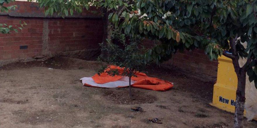 Kahramanmaraş'ta ağaçtan düşen yaşlı adam hayatını kaybetti