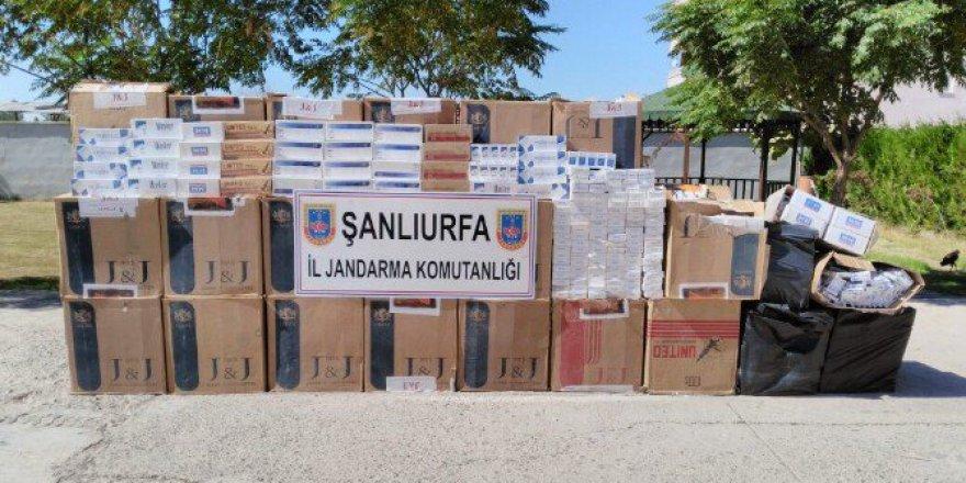 Şanlıurfa, Suruç'ta 22 Bin 320 Paket Kaçak Sigara Ele Geçirildi