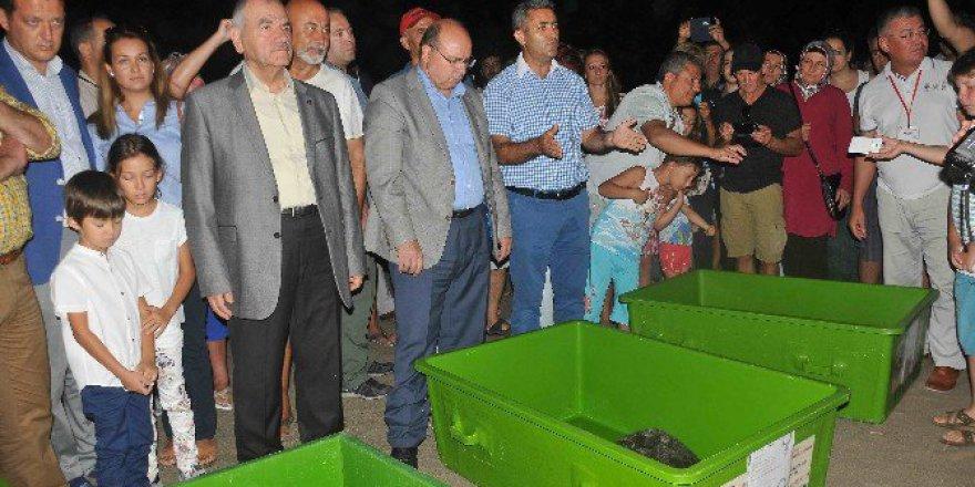 Ortaca Dekamer'de Tedavileri Tamamlanan Deniz Kaplumbağaları Denize Bırakıldı