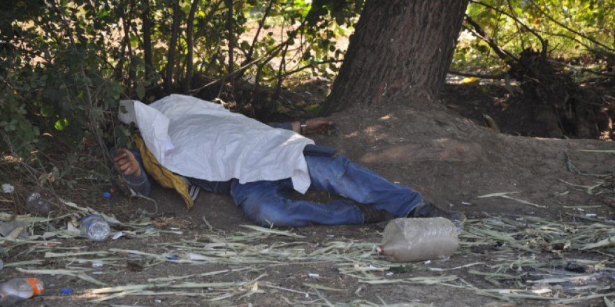 Bursa, İnegöl'de ağaç altında ceset bulundu!