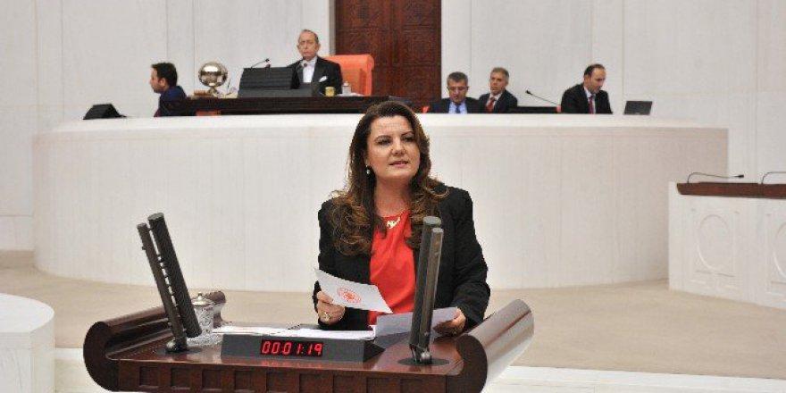 Chp'li Fatma Kaplan Hürriyet Ohal Kararlarını Eleştirdi
