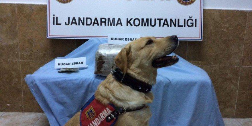 Kayseri'de Uyuşturucu Operasyonları: 5 Gözaltı