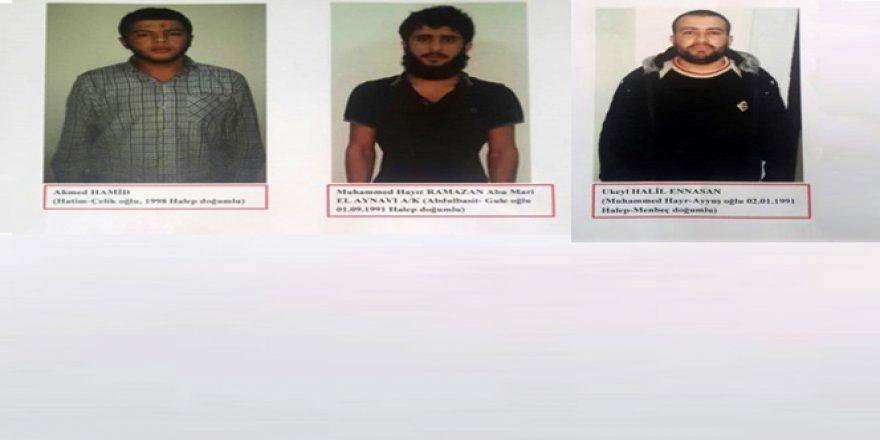 3 DAEŞ'li terörist yakalandı