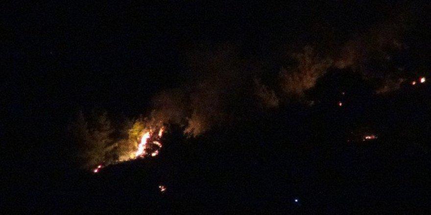 Adana, Kozan'da Orman Yangını