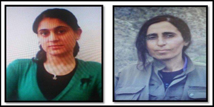 Siirt'te Aranan 3 Terör Şüphelisinden 1'i Yakalandı