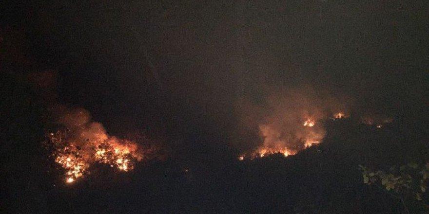 Rize, Çayeli'de Örtü Yangını