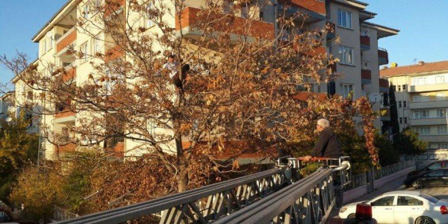 Ağaçta Mahsur Kalan Genci İtfaiye Ekipleri Kurtardı