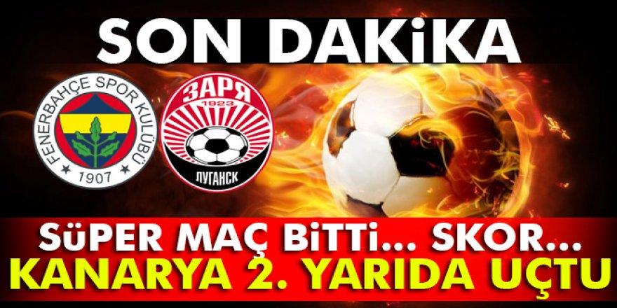 Fenerbahçe-Zorya UEFA maçı geniş özeti ve golleri