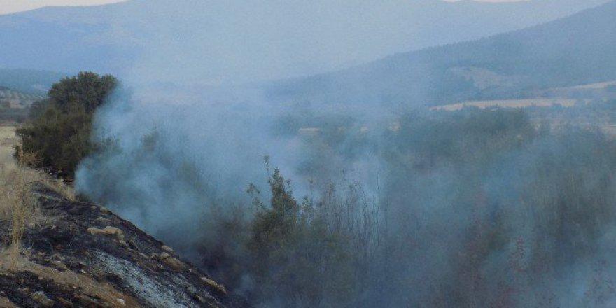 Aydın'da Kuraklık Nedeniyle Örtü Yangınları Devam Ediyor