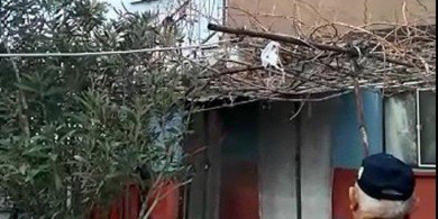 Bandırma'da Bir Evde Prizde Unutulan Elektrikli Battaniye Yangın Çıkardı