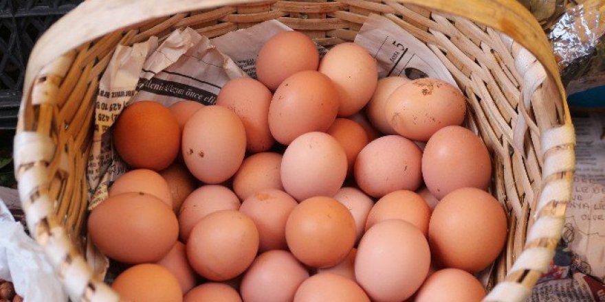 Türk Yumurtası Değerlendi! 1 TL'ye 1 Yumurta