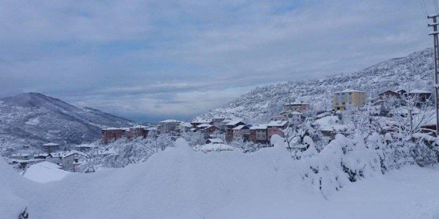 Kastamonu, Cide'de Eğitime Kar Tatili