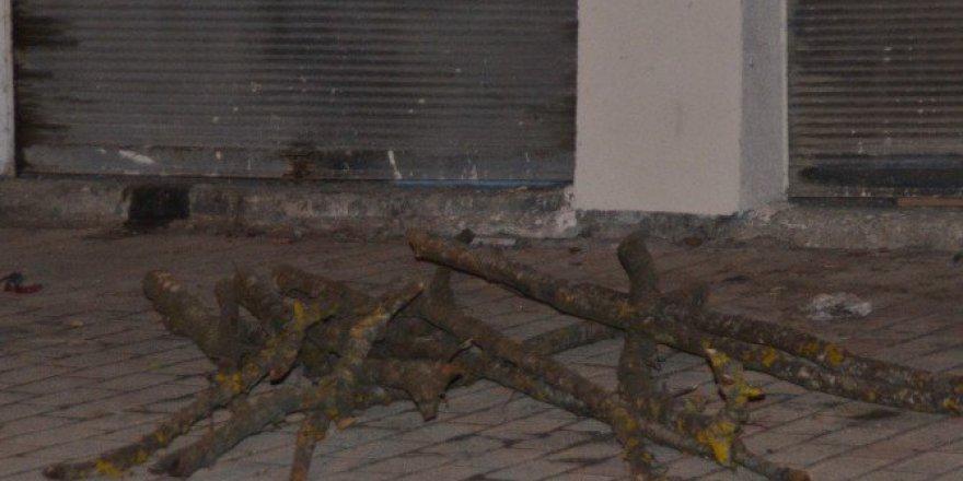 Samsun, Bafra'da Başına Ağaç Dalı Düşen Genç Yaralandı