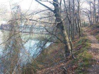 3 Aydır Aranıyordu: Yunus Çetinkaya'nın Cesedi Belgrad Ormanı'nda Bulundu