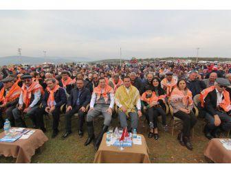 İzmir Menderes'te Coşkulu Yörük Şenliği