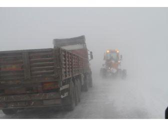 Batıda Bahar! Ardahan'da kar çilesi