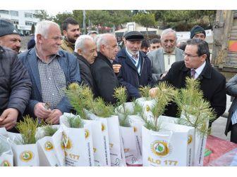 Yozgat'ta 5 Bin Fidan Dağıtımı Yapıldı