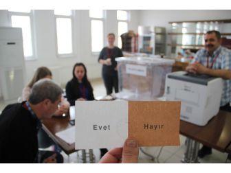 Gurbetçi Vatandaşların Referandum İçin Oy Kullanımı Başladı