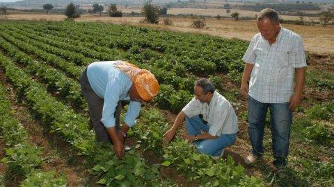 Tabii Afetlerden Zarar Gören Çiftçilerin Tarımsal Kredi Borçları Erteleniyor