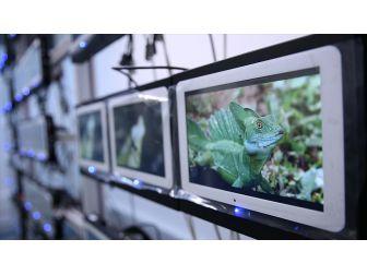 HAVELSAN ve THY Teknik'ten ''Kablosuz Eğlence Sistemli'' Çözüm