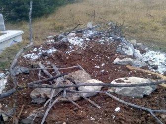 Kastamonu'da Aç Kalan Ayılar, Mezarlara Dadandı