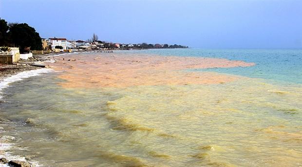 Türkiye şokta. Ege Denizi'nde neler oluyor! Deniz iki renge büründü