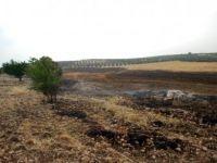 Manisa, Salihli'de Bin 500 Dönüm Ekili Alan Kül Oldu