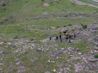 Van, Muradiye'de Köylünün Kaybolan Hayvanlarını Jandarma Buldu