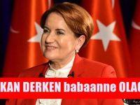 Meral Akşener ve İYİ Parti'nin çöküşü: Deprem başladı