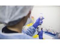 Erken Kanser Hücrelerinin Tespitinde Manyetik Tel Teknolojisi