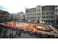 Grande Place Meydanı Latin Motifli Çiçek Halıya Bezendi