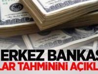 Merkez Bankasından moral bozan açıklama :