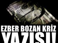 Türkiye'deki Krize gurbetçiler seviniyor mu?
