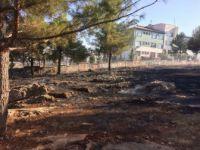 Adıyaman'da Ot Yangını Ormanlık Alana Sıçradı
