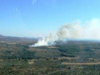 Çanakkale, Ezine'deki Orman Yangını Kontrol Altına Alındı