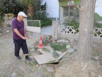 Manisa'da Ağaç Nakillerine Vatandaşlardan Teşekkür
