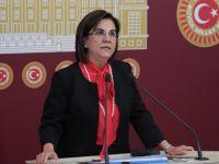 CHP'den Zehir Zemberek Ferhat Göçer açıklaması