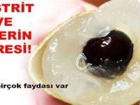 Gastrit ile ülserin çaresi Ve mide yanmasının kesin önleyen kullanımı