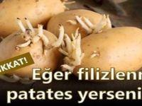Filizlenmiş patatesteki büyük tehlike! Bakınız ne oluyor! Lütfen paylaşalım